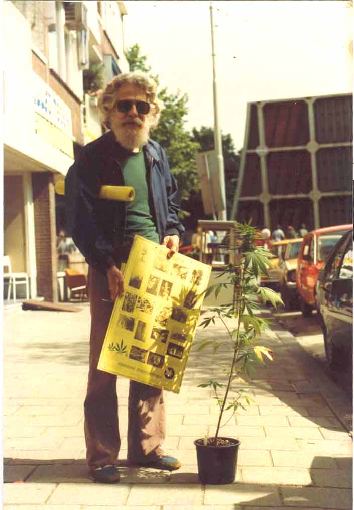 Old Ed with Yellow Lowlands Seed Poster in Amsterdam